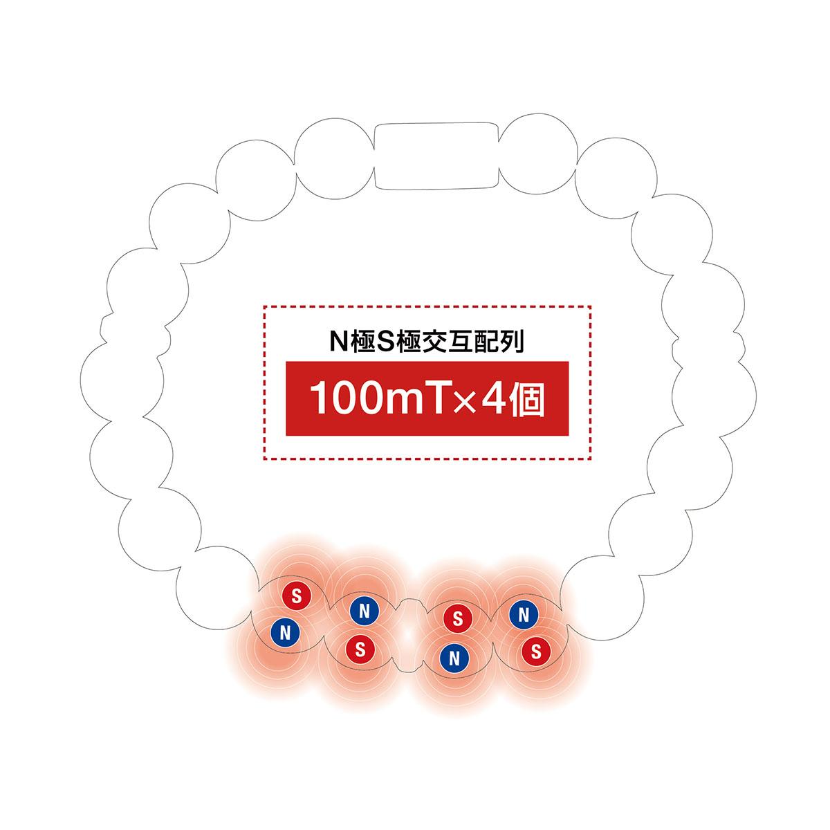 コラントッテ ループ EN-tsubomi 磁石配置イメージ図