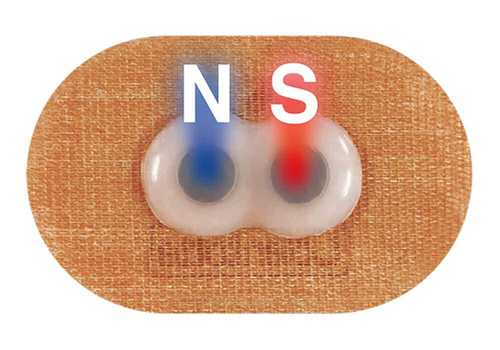 コラントッテ NS マグネバン 磁石配置図