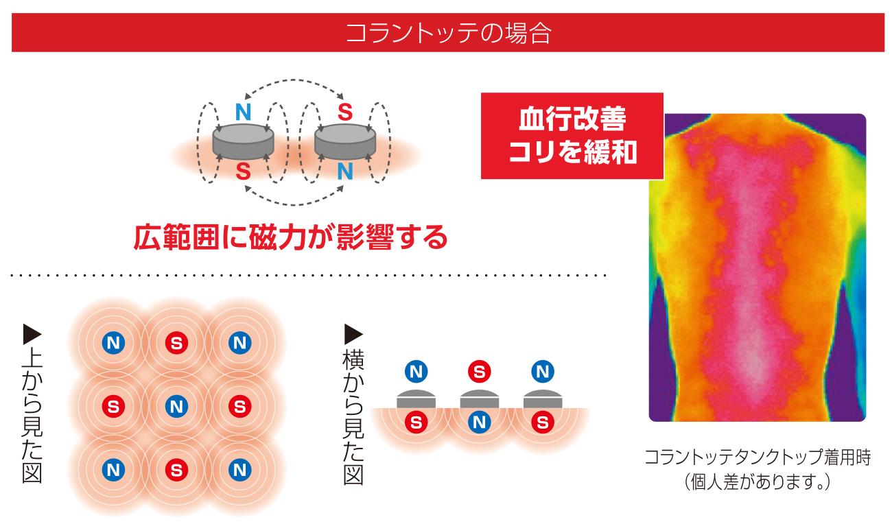 コラントッテの場合 「広範囲に磁力が影響する」 血行改善コリを緩和